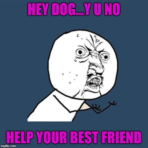 Y U No Meme | HEY DOG...Y U NO HELP YOUR BEST FRIEND | image tagged in memes,y u no | made w/ Imgflip meme maker