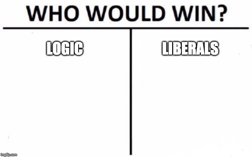 FIGHT! | LOGIC LIBERALS | image tagged in who would win,liberals,logic,donald trump,hillary clinton,mortal kombat | made w/ Imgflip meme maker