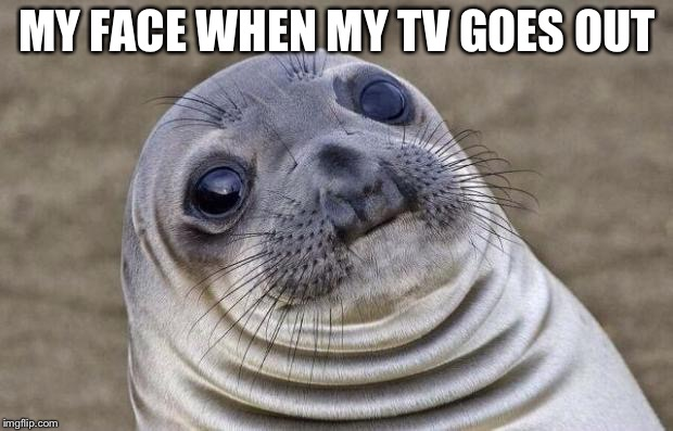 Awkward Moment Sealion Meme | MY FACE WHEN MY TV GOES OUT | image tagged in memes,awkward moment sealion | made w/ Imgflip meme maker