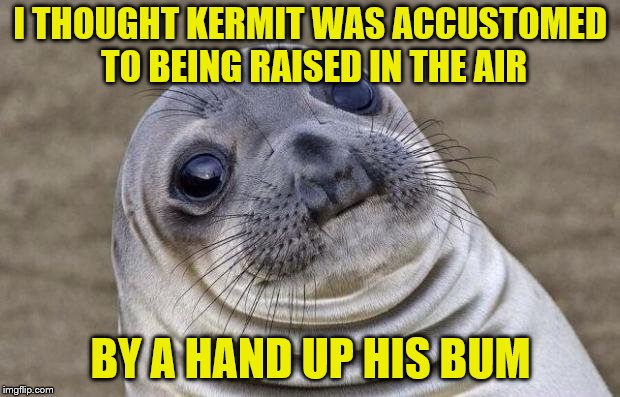 Awkward Moment Sealion Meme | I THOUGHT KERMIT WAS ACCUSTOMED TO BEING RAISED IN THE AIR BY A HAND UP HIS BUM | image tagged in memes,awkward moment sealion | made w/ Imgflip meme maker