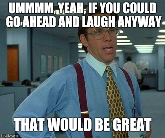 That Would Be Great Meme | UMMMM, YEAH, IF YOU COULD GO AHEAD AND LAUGH ANYWAY THAT WOULD BE GREAT | image tagged in memes,that would be great | made w/ Imgflip meme maker