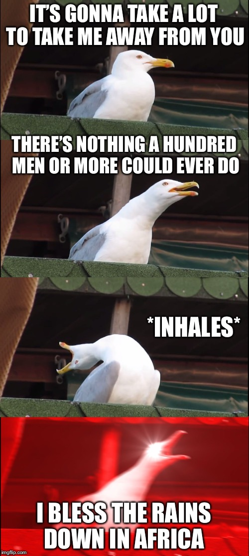 Inhaling Seagull Meme | IT'S GONNA TAKE A LOT TO TAKE ME AWAY FROM YOU THERE'S NOTHING A HUNDRED MEN OR MORE COULD EVER DO *INHALES* I BLESS THE RAINS DOWN IN AFRIC | image tagged in memes,inhaling seagull | made w/ Imgflip meme maker