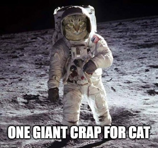 Um...Houston? | ONE GIANT CRAP FOR CAT | image tagged in cat poop,gotta go cat,cat meme,catwalk,funny cat memes,cats are awesome | made w/ Imgflip meme maker
