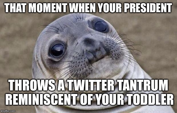 Awkward Moment Sealion Meme | THAT MOMENT WHEN YOUR PRESIDENT THROWS A TWITTER TANTRUM REMINISCENT OF YOUR TODDLER | image tagged in memes,awkward moment sealion | made w/ Imgflip meme maker