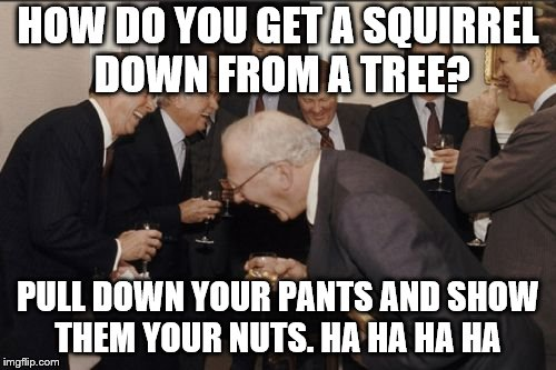Laughing Men In Suits Meme | HOW DO YOU GET A SQUIRREL DOWN FROM A TREE? PULL DOWN YOUR PANTS AND SHOW THEM YOUR NUTS. HA HA HA HA | image tagged in memes,laughing men in suits | made w/ Imgflip meme maker
