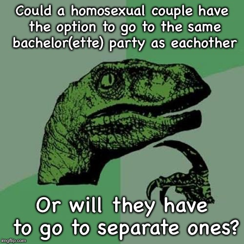 Caught my curiosity | Could a homosexual couple have the option to go to the same bachelor(ette) party as eachother Or will they have to go to separate ones? | image tagged in memes,philosoraptor,homosexuality,bachelor,bachelorette,parties | made w/ Imgflip meme maker