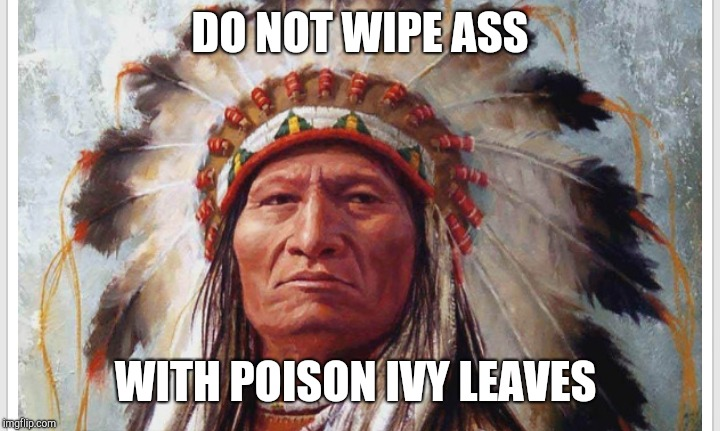 DO NOT WIPE ASS WITH POISON IVY LEAVES | made w/ Imgflip meme maker
