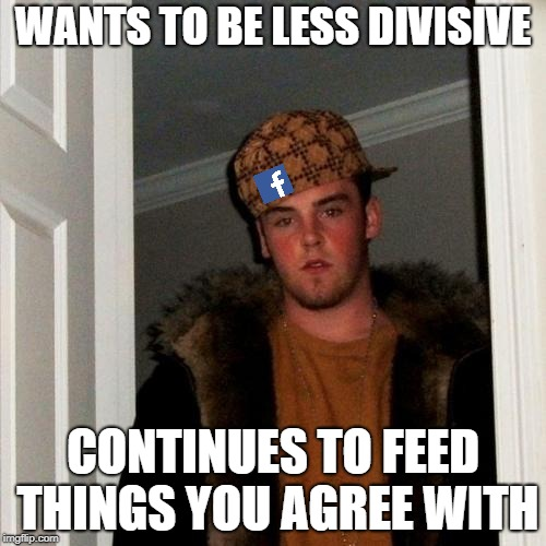 Scumbag Steve Meme | WANTS TO BE LESS DIVISIVE CONTINUES TO FEED THINGS YOU AGREE WITH | image tagged in memes,scumbag steve,AdviceAnimals | made w/ Imgflip meme maker
