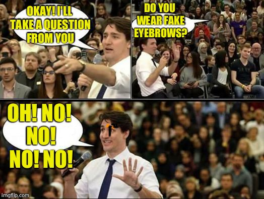 A real man's man | OKAY! I'LL TAKE A QUESTION FROM YOU DO YOU WEAR FAKE EYEBROWS? OH! NO! NO! NO! NO! | image tagged in g7,trudeau,justin trudeau sjw | made w/ Imgflip meme maker