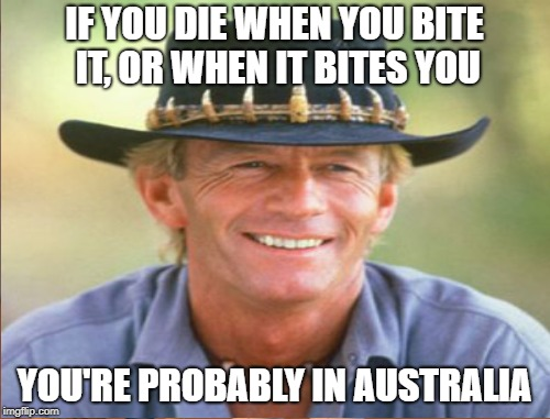IF YOU DIE WHEN YOU BITE IT, OR WHEN IT BITES YOU YOU'RE PROBABLY IN AUSTRALIA | made w/ Imgflip meme maker
