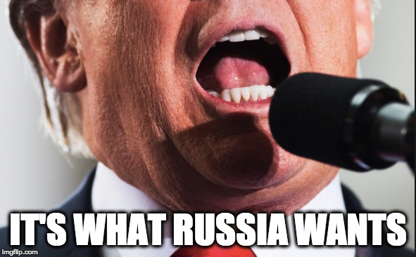 IT'S WHAT RUSSIA WANTS | image tagged in memes | made w/ Imgflip meme maker