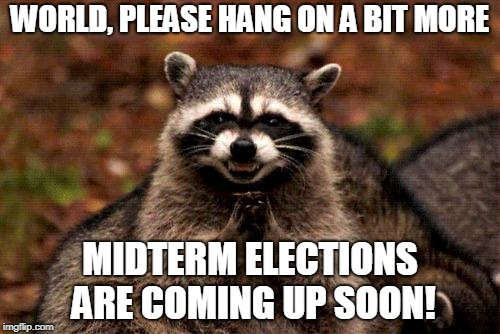 Evil Plotting Raccoon | WORLD, PLEASE HANG ON A BIT MORE MIDTERM ELECTIONS ARE COMING UP SOON! | image tagged in memes,evil plotting raccoon | made w/ Imgflip meme maker