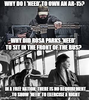 My rights don't end where your feelings begin. | WHY DO I 'NEED' TO OWN AN AR-15? WHY DID ROSA PARKS 'NEED' TO SIT IN THE FRONT OF THE BUS? IN A FREE NATION, THERE IS NO REQUIREMENT TO SHOW | image tagged in memes,rosa parks | made w/ Imgflip meme maker