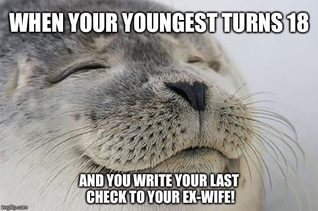 Satisfied Seal Meme | WHEN YOUR YOUNGEST TURNS 18 AND YOU WRITE YOUR LAST CHECK TO YOUR EX-WIFE! | image tagged in memes,satisfied seal | made w/ Imgflip meme maker