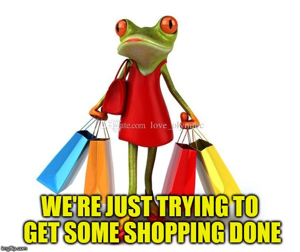 WE'RE JUST TRYING TO GET SOME SHOPPING DONE | made w/ Imgflip meme maker