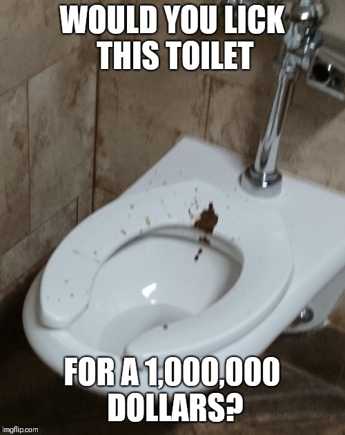 Yet another stupid social media challenge | WOULD YOU LICK THIS TOILET FOR A 1,000,000 DOLLARS? | image tagged in memes | made w/ Imgflip meme maker