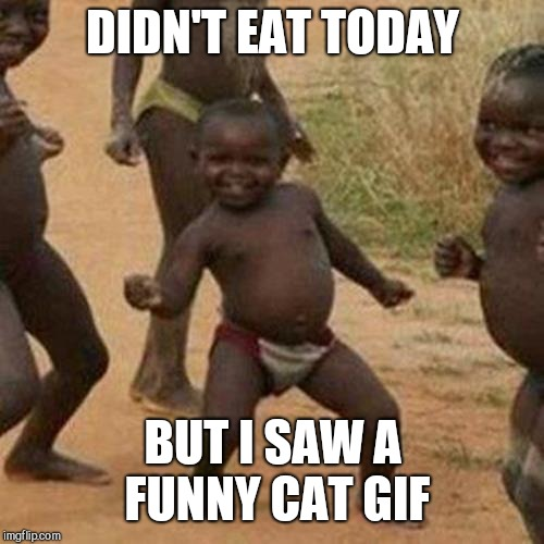 Third World Success Kid Meme | DIDN'T EAT TODAY BUT I SAW A FUNNY CAT GIF | image tagged in memes,third world success kid | made w/ Imgflip meme maker