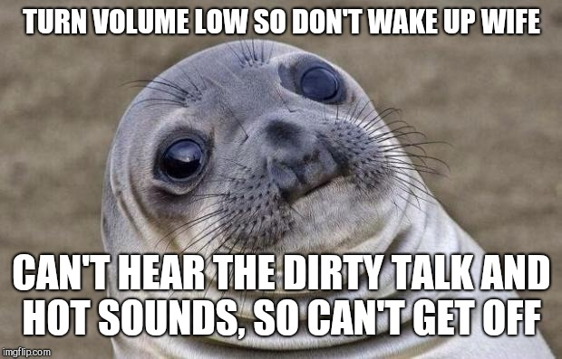 Awkward Moment Sealion Meme | TURN VOLUME LOW SO DON'T WAKE UP WIFE CAN'T HEAR THE DIRTY TALK AND HOT SOUNDS, SO CAN'T GET OFF | image tagged in memes,awkward moment sealion | made w/ Imgflip meme maker