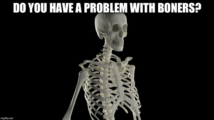DO YOU HAVE A PROBLEM WITH BONERS? | made w/ Imgflip meme maker