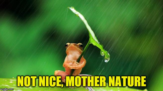 NOT NICE, MOTHER NATURE | made w/ Imgflip meme maker