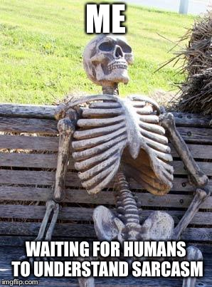 The joke's on them | ME WAITING FOR HUMANS TO UNDERSTAND SARCASM | image tagged in memes,waiting skeleton,sarcasm,waiting,humans | made w/ Imgflip meme maker