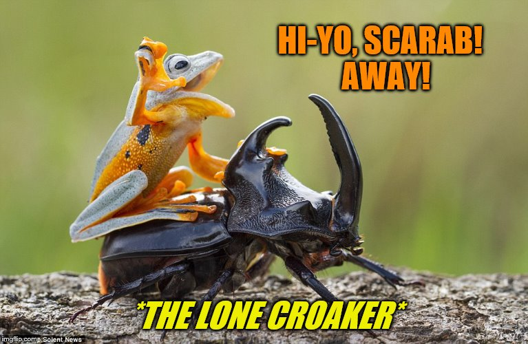 Thanks to everyone for participating in Frog Week!  ~Much love from JBmemegeek and giveuahint as we ride off into the sunset | HI-YO, SCARAB!  AWAY! *THE LONE CROAKER* | image tagged in memes,frog week,jbmemegeek,giveuahint,hi-yo silver,lone ranger | made w/ Imgflip meme maker