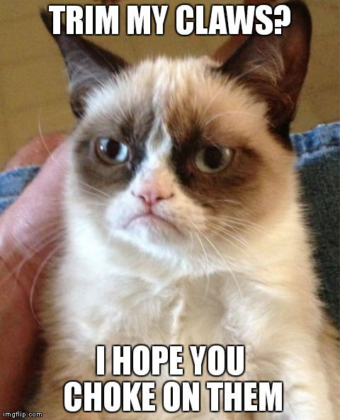 Grumpy Cat | TRIM MY CLAWS? I HOPE YOU CHOKE ON THEM | image tagged in memes,grumpy cat | made w/ Imgflip meme maker