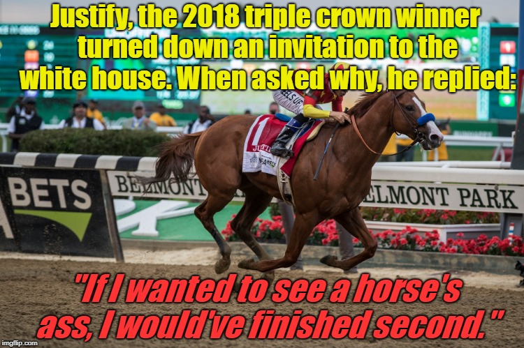 "Justify | Justify, the 2018 triple crown winner turned down an invitation to the white house. When asked why, he replied: ""If I wanted to see a horse' 