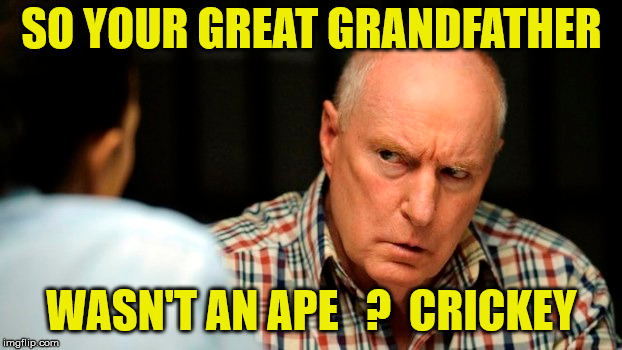 alf stewart | SO YOUR GREAT GRANDFATHER WASN'T AN APE   ?  CRICKEY | image tagged in evolution,apes,grandpa | made w/ Imgflip meme maker
