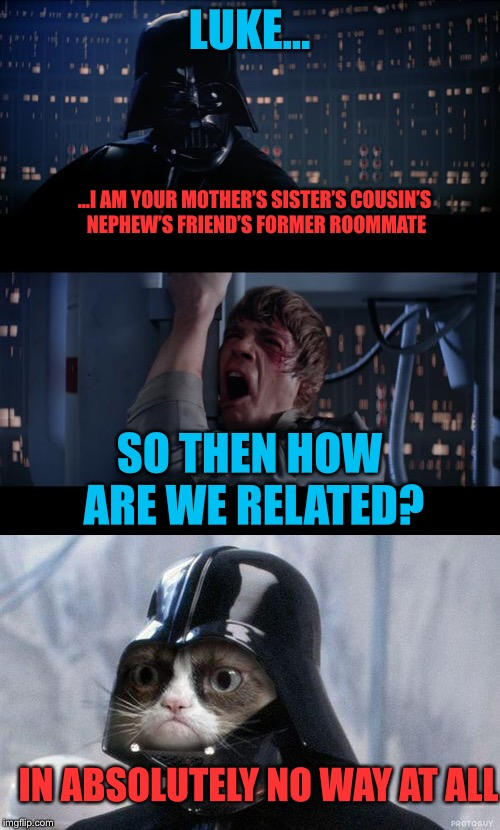 A tribute to 'Spaceballs' (a spoof on Star Wars)! | LUKE... ...I AM YOUR MOTHER'S SISTER'S COUSIN'S NEPHEW'S FRIEND'S FORMER ROOMMATE SO THEN HOW ARE WE RELATED? IN ABSOLUTELY NO WAY AT ALL | image tagged in darth vader,nooooooooo,relationships | made w/ Imgflip meme maker