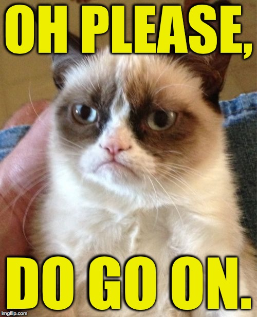 Grumpy Cat Meme | OH PLEASE, DO GO ON. | image tagged in memes,grumpy cat | made w/ Imgflip meme maker