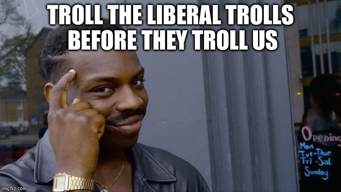 Roll Safe Think About It Meme | TROLL THE LIBERAL TROLLS BEFORE THEY TROLL US | image tagged in memes,roll safe think about it | made w/ Imgflip meme maker