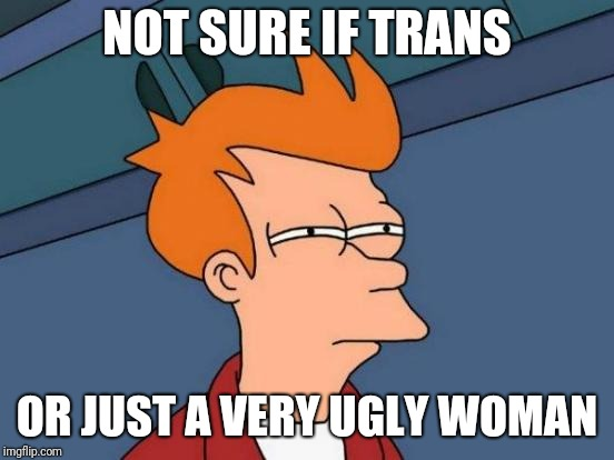 Futurama Fry Meme | NOT SURE IF TRANS OR JUST A VERY UGLY WOMAN | image tagged in memes,futurama fry | made w/ Imgflip meme maker