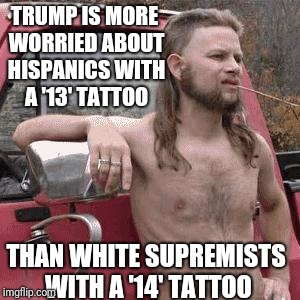 almost redneck | TRUMP IS MORE WORRIED ABOUT HISPANICS WITH A '13' TATTOO THAN WHITE SUPREMISTS WITH A '14' TATTOO | image tagged in almost redneck | made w/ Imgflip meme maker