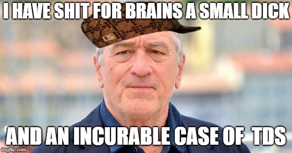 I HAVE SHIT FOR BRAINS A SMALL DICK AND AN INCURABLE CASE OF  TDS | image tagged in niro,scumbag | made w/ Imgflip meme maker