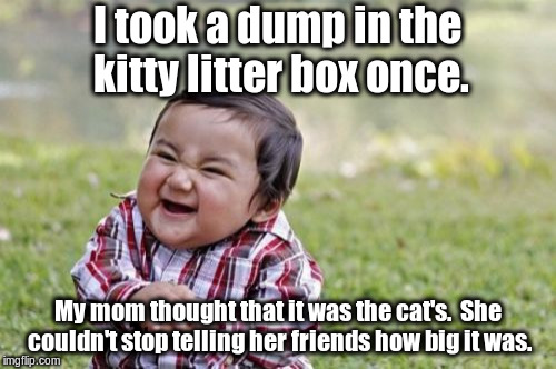 Evil Toddler Meme | I took a dump in the kitty litter box once. My mom thought that it was the cat's.  She couldn't stop telling her friends how big it was. | image tagged in memes,evil toddler | made w/ Imgflip meme maker