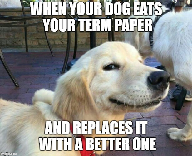 WHEN YOUR DOG EATS YOUR TERM PAPER AND REPLACES IT WITH A BETTER ONE | made w/ Imgflip meme maker