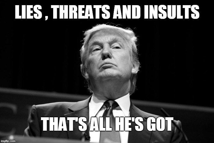 LIES , THREATS AND INSULTS THAT'S ALL HE'S GOT | image tagged in trump | made w/ Imgflip meme maker