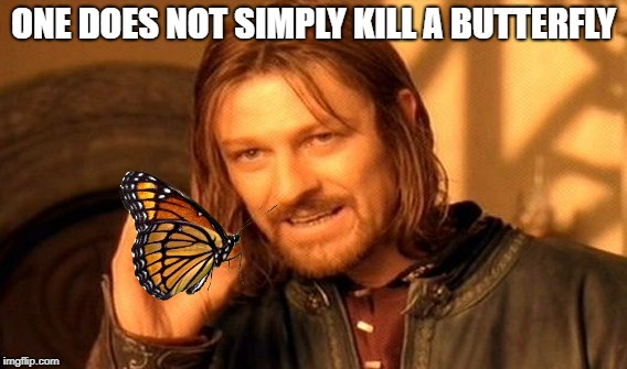 One Does Not Simply Meme | ONE DOES NOT SIMPLY KILL A BUTTERFLY | image tagged in memes,one does not simply | made w/ Imgflip meme maker
