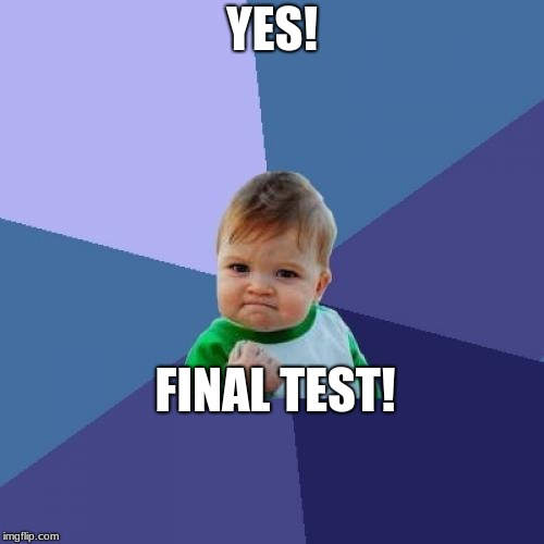 Success Kid Meme | YES! FINAL TEST! | image tagged in memes,success kid | made w/ Imgflip meme maker