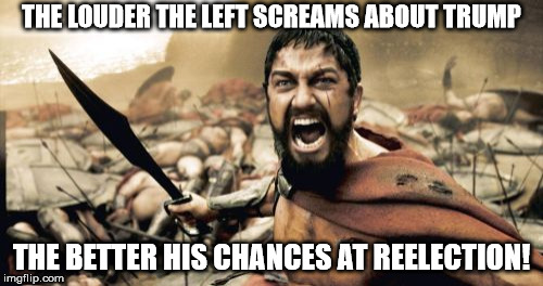 Sparta Leonidas Meme | THE LOUDER THE LEFT SCREAMS ABOUT TRUMP THE BETTER HIS CHANCES AT REELECTION! | image tagged in memes,sparta leonidas | made w/ Imgflip meme maker