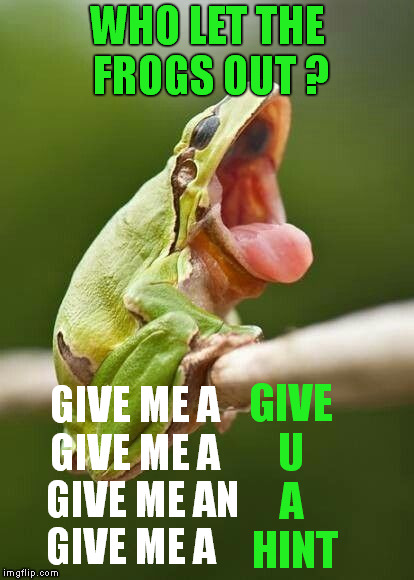 who let the frogs out ? | WHO LET THE FROGS OUT ? GIVE ME A  GIVE ME A    GIVE ME AN  GIVE ME A GIVE   U     A      HINT | image tagged in frog week,giveuahint,memes | made w/ Imgflip meme maker