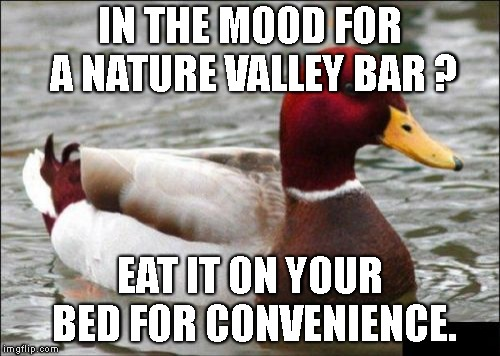 Malicious Advice Mallard Meme | IN THE MOOD FOR A NATURE VALLEY BAR ? EAT IT ON YOUR BED FOR CONVENIENCE. | image tagged in memes,malicious advice mallard | made w/ Imgflip meme maker