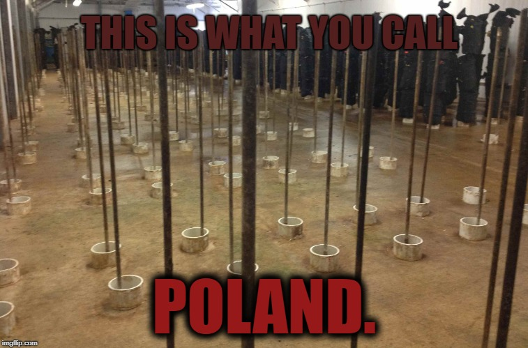 Looking for peeple to help me with country weak | THIS IS WHAT YOU CALL POLAND. | image tagged in poland,memes,pole,europe,bad pun dog | made w/ Imgflip meme maker