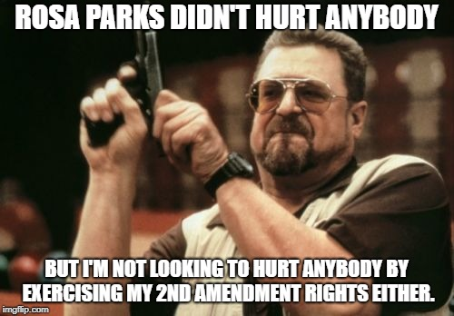 Am I The Only One Around Here Meme | ROSA PARKS DIDN'T HURT ANYBODY BUT I'M NOT LOOKING TO HURT ANYBODY BY EXERCISING MY 2ND AMENDMENT RIGHTS EITHER. | image tagged in memes,am i the only one around here | made w/ Imgflip meme maker