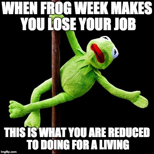 When you lose your job because of frog week | WHEN FROG WEEK MAKES YOU LOSE YOUR JOB THIS IS WHAT YOU ARE REDUCED TO DOING FOR A LIVING | image tagged in kermit pole dance,frogweek,kermitthefrog | made w/ Imgflip meme maker