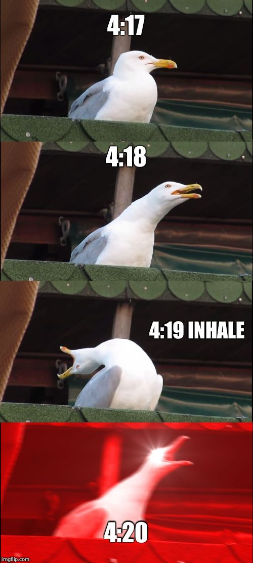 Inhaling Seagull Meme | 4:17 4:18 4:19 INHALE 4:20 | image tagged in memes,inhaling seagull | made w/ Imgflip meme maker
