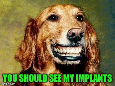 YOU SHOULD SEE MY IMPLANTS | image tagged in happy dog mf meme | made w/ Imgflip meme maker