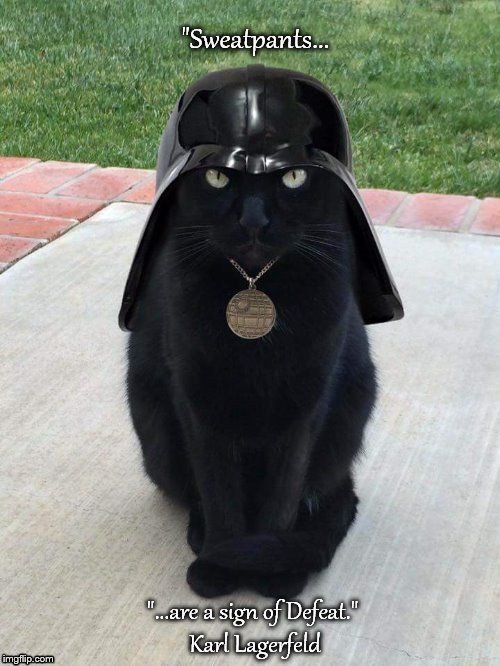 image tagged in vadar cat fashion | made w/ Imgflip meme maker