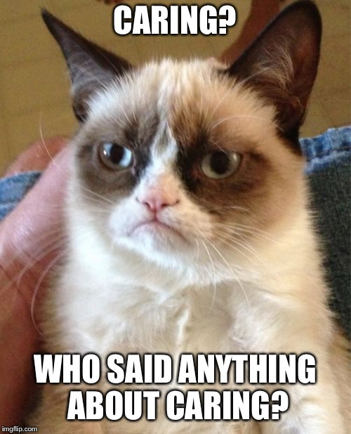 Grumpy Cat Meme | CARING? WHO SAID ANYTHING ABOUT CARING? | image tagged in memes,grumpy cat | made w/ Imgflip meme maker